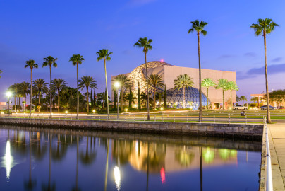 The exterior of a museum behind palm trees and a waterway