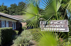 office entrance with palm trees