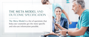 meta model and outcome specification