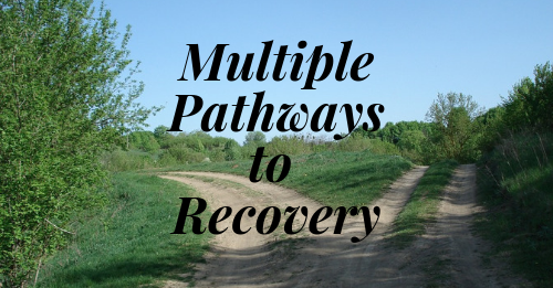 Multiple Pathways to Recovery
