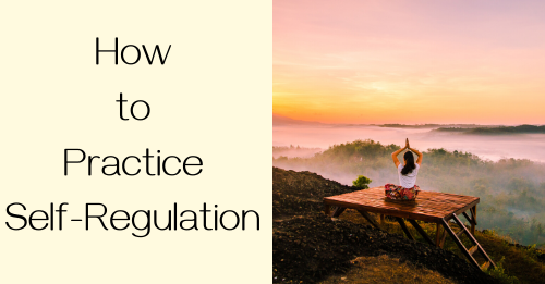 """how to practice self-regulation"" Graphic"